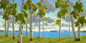 Afternoon at Birch Beach by Charles Fenner Ball