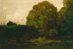 A Pond in the Morvan, 1869 by Charles Francois Daubigny