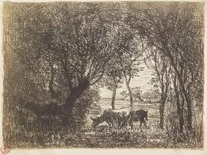Vaches Sous Bois, 1862 by Charles Francois Daubigny