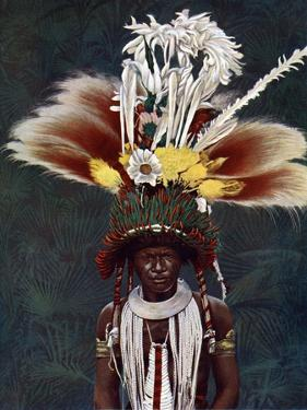 A Roro Chief Dressed for a Ceremonial Dance, Papua New Guinea, 1920 by Charles Gabriel Seligman