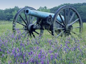 Artillery Cannon, Petersburg National Battlefield Park, Virginia, USA by Charles Gurche