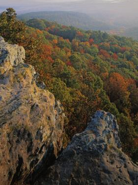 Autumn, Mt. Nebo State Park, Arkansas, USA by Charles Gurche
