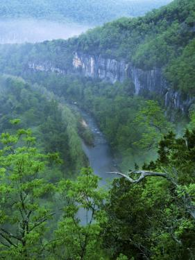 Buffalo National River, Arkansas, USA by Charles Gurche
