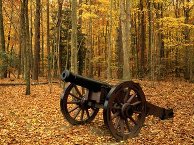 Cannon at Yorktown, Colonial National Historical Park, Virginia, USA by Charles Gurche