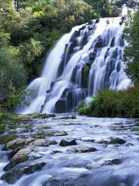 Cascade, Karangahake Gorge, North Island, New Zealand by Charles Gurche
