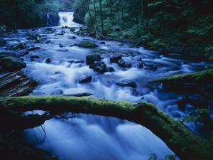 Crystal Falls, McDowell Creek Falls Country Park, Oregon, USA by Charles Gurche