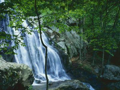 Dark Hollow Falls, Shenandoah National Park, Virginia, USA by Charles Gurche
