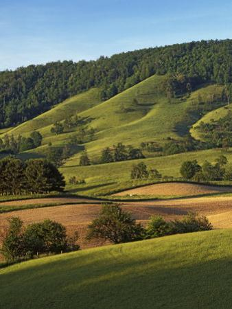 Fields of Burkes Garden, Virginia, USA by Charles Gurche
