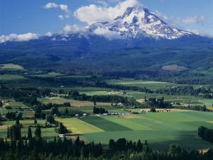 Mt. Hood, Hood River Valley, Oregon, USA by Charles Gurche