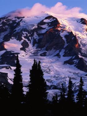 Mt. Rainier at sunrise, Mt. Rainier National Park, Washington, USA by Charles Gurche