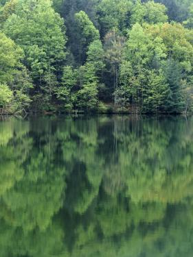 Reflections in Charlottesville Lake, Blue Ridge Mountains, Virginia, USA by Charles Gurche