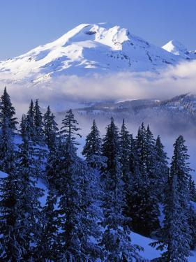 South Sister, Deschutes National Forest, Oregon, USA by Charles Gurche