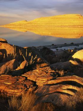 Stansbury Island, Great Salt Lake, Utah, USA by Charles Gurche
