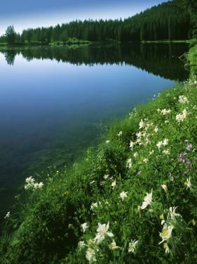 Tony Grove Lake, Uinta-Wasatch-Cache National Forest, Utah, USA by Charles Gurche