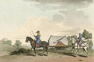Horse Litter by Charles Hamilton Smith