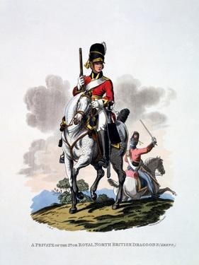 Uniform of a Private of the 2nd or Royal North British Dragoons, 'The Greys', from 'Costume of… by Charles Hamilton Smith