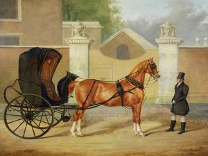 Gentlemen's Carriages: a Cabriolet, c.1820-30 by Charles Hancock