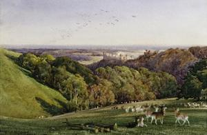 Evening in Arundel Park, Sussex, England by Charles James Adams
