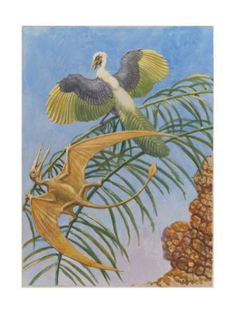 Archaeopteryx and Pterosaurs Were Some of the First Flying Lifeforms by Charles Knight