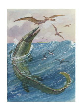 Mosasaurus Species Lived in Kansas, United States by Charles Knight