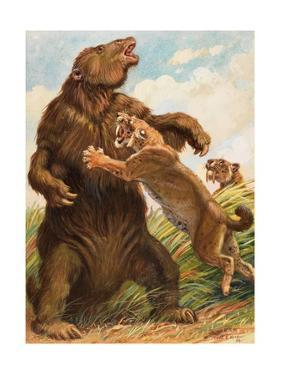 Slow Megatherium Was No Match for the Saber Tooth Tiger by Charles Knight