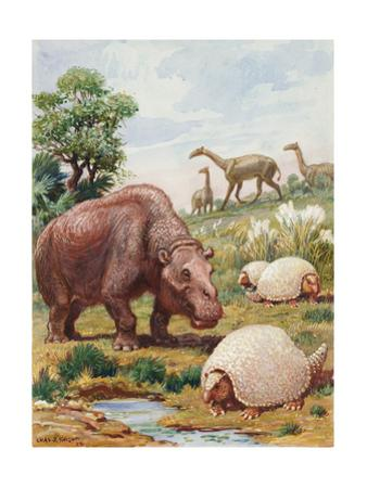 Toxodon, Glyptodon and Macrauchenias Lived in South America by Charles Knight