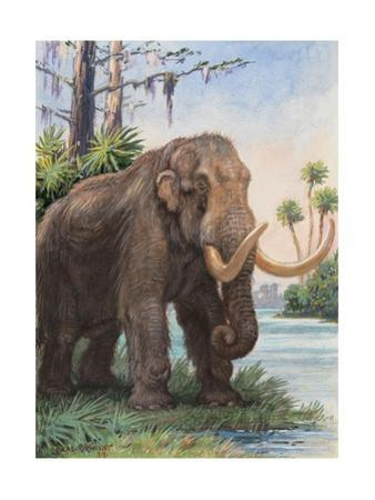 When the Age of Man Began, the Mastodon Still Inhabited North America by Charles Knight