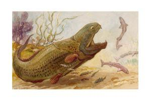 The Extinct Dinichthys Fish Could Grow Up to Twenty-Five Feet Long by Charles R. Knight