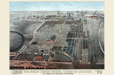 Great Union Stockyards of Chicago