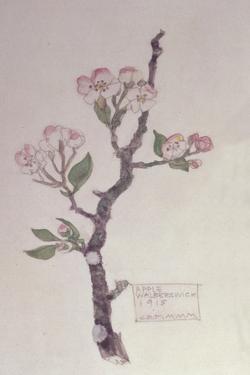 Apple, Walberswick, 1915 by Charles Rennie Mackintosh