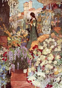 The Sensitive Plant, Robinson by Charles Robinson