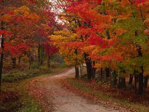 Country Road in the Fall, Vermont, USA by Charles Sleicher
