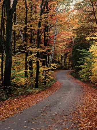 Country Road, Vermont, USA
