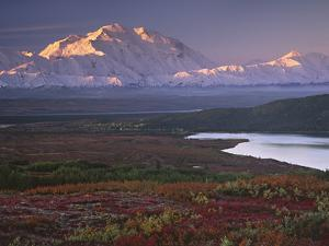 Denali National Park near Wonder Lake, Alaska, USA by Charles Sleicher