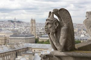Europe, France, Paris. a Gargoyle on the Notre Dame Cathedral by Charles Sleicher