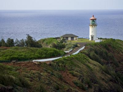 Kilauea Lighthouse, Kauai, Hawaii, USA