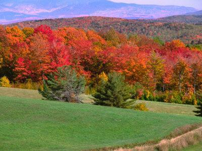 Vermont Hills in the Fall, Vermont, USA