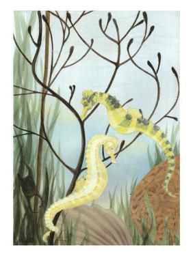 Seahorse Serenade II by Charles Swinford