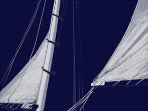 Schooner Sails II by Charlie Carter