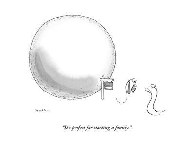"""""""It's perfect for starting a family."""" - New Yorker Cartoon"""