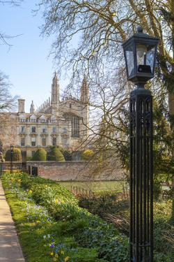 A View of Kings College from the Backs, Cambridge, Cambridgeshire, England, United Kingdom, Europe by Charlie Harding