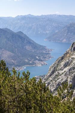 Bay of Kotor, UNESCO World Heritage Site, Montenegro, Europe by Charlie Harding