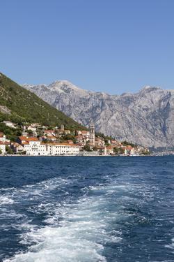 Perast, Bay of Kotor, UNESCO World Heritage Site, Montenegro, Europe by Charlie Harding