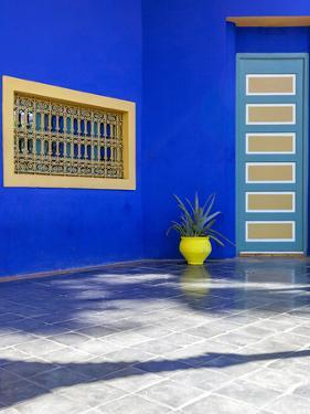 The Majorelle Gardens, Marrakech, Morocco, North Africa, Africa by Charlie Harding