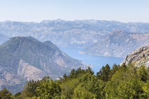 Views of the Bay of Kotor, Just Outside of Lovcen Nation Park, Njegusi, Montenegro, Europe by Charlie Harding