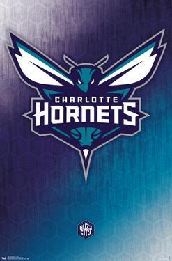 Charlotte Hornets - Logo 14