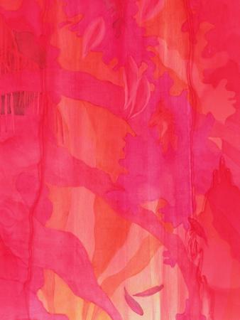 Mascarene Maya, 2000