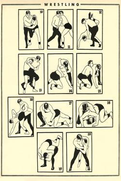Chart of Wrestling Holds