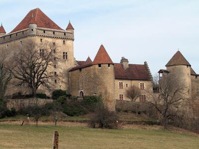 https://imgc.allpostersimages.com/img/posters/chateau-du-pin-le-pin-jura-franche-comte-france-europe_u-L-PFO0A10.jpg?p=0