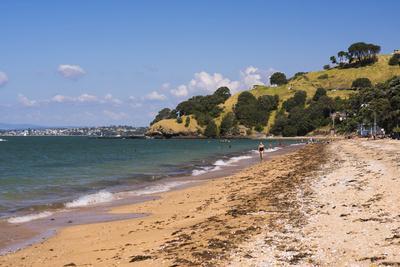 https://imgc.allpostersimages.com/img/posters/cheltenham-beach-devenport-auckland-north-island-new-zealand-pacific_u-L-Q12R4YB0.jpg?p=0